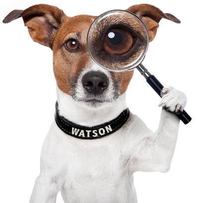 Resultado de imagem para watchdog